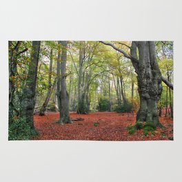Walking Through Epping Forest Rug