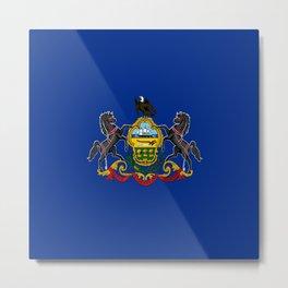 flag pennsylvania,america,us,pennsylvanian,keystone, quaker,appalach,philadelphia,pittsburgh,erie Metal Print