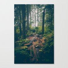 Rainforest Path Canvas Print