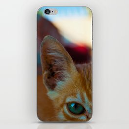 Le Cat iPhone Skin