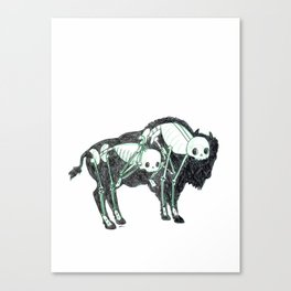 Bison Animus Canvas Print