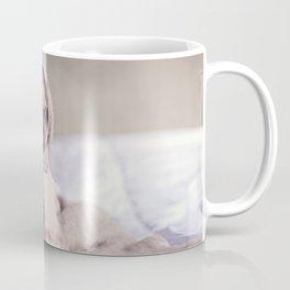 Snug pug in a rug Coffee Mug