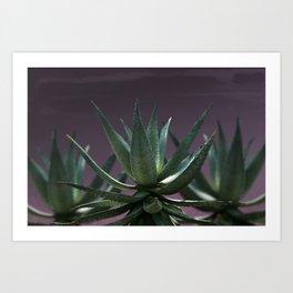 Aloe Aloe Aloe Art Print