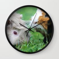 pigs Wall Clocks featuring guinea pigs by Christine baessler