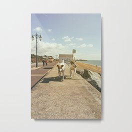 Dogwalk AE Metal Print