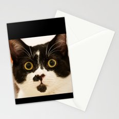 Pussy cat, pussy cat Stationery Cards