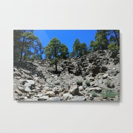 View of a rocky hillside in the Canary Islands Metal Print