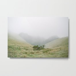 mt tam in the fog Metal Print