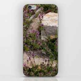 Rocks and Bugle iPhone Skin