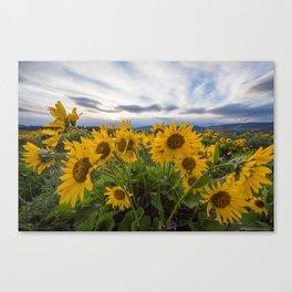 Wildflowers at Rowena Crest Canvas Print