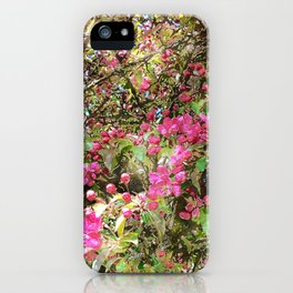 Springtime, purple blossoms iPhone Case