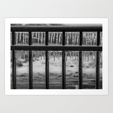 Frozen Fence Art Print