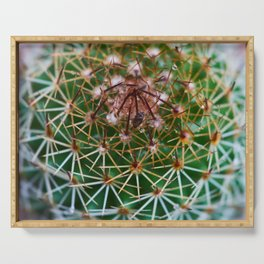Cactus 3 Serving Tray