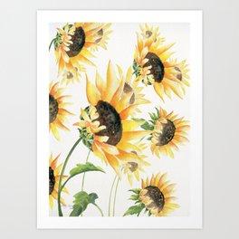When Sunflowers Say Hello  Art Print