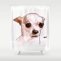chihuahua Shower Curtains featuring Chihuahua by BNVDO ARTS