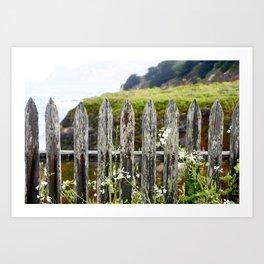 Rustic Picket Fence  Art Print