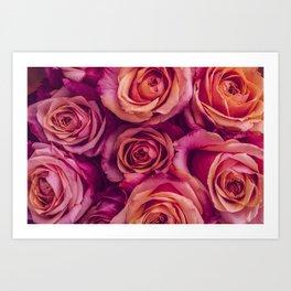 Bruises and Roses Art Print