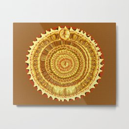 Ecliptic Metal Print
