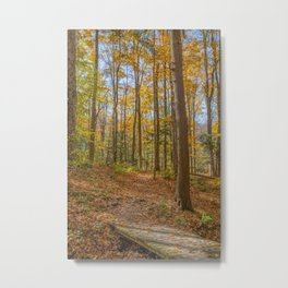 Autumn Forest in Mustard and Rust Metal Print
