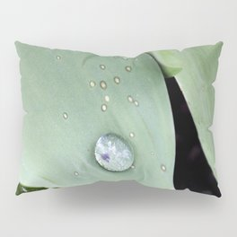 Morning Dew Pillow Sham