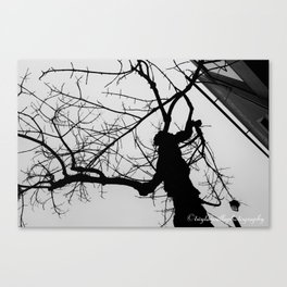 The Haunting of The Tree Canvas Print