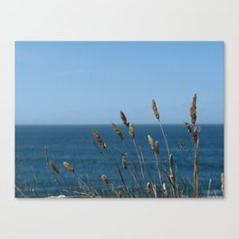 Waving in the wind Canvas Print
