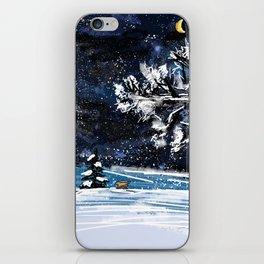 Frosty Night iPhone Skin