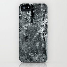 Great Grey Owl i iPhone Case