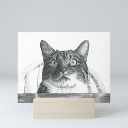 My Hungry Cat Mini Art Print