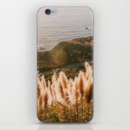 Big Sur at Sunset iPhone Skin