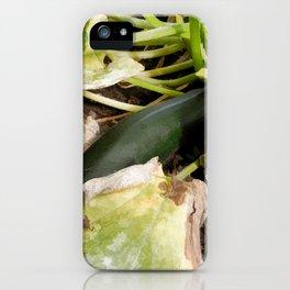 Zucchini in garden iPhone Case