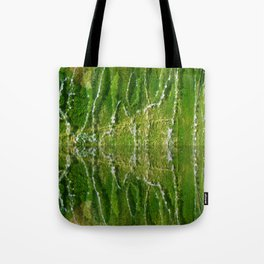 Fountain Reflections Tote Bag