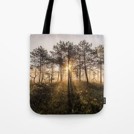 First rays of sunshine Tote Bag