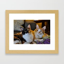 Whisky and Gypsy - Rescued Framed Art Print