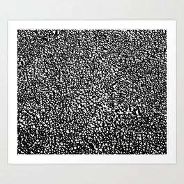 1/11 Art Print