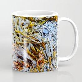 Tidal Shelf Garden Coffee Mug