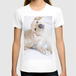A sweet photograph of a baby Labrador dog T-shirt