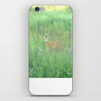 bambi iPhone & iPod Skins featuring BAMBI by Magdado