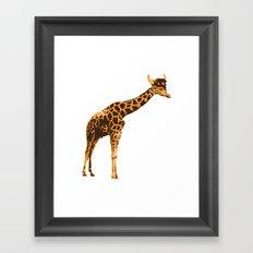 Giraffe Viking Framed Art Print