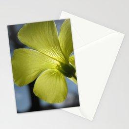 Floral Radiance Stationery Cards