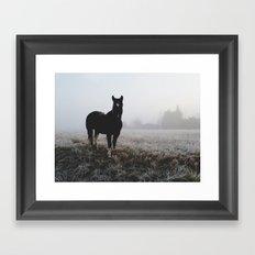Frosty Klamath Horse Framed Art Print