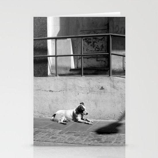 Stray Dog Stationery Cards