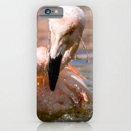 #Flamingo a #big #bird #loves to #swim iPhone Case