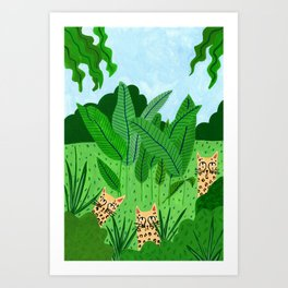 Leopards in the jungle Art Print