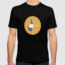 Dutch Rabbit Bunaloons T-shirt