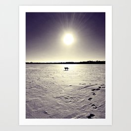 Lab at Dusk Art Print