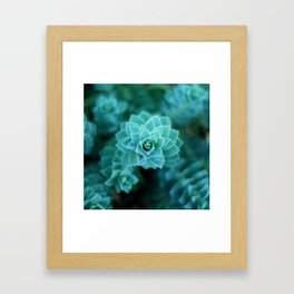 Natural Geometry Framed Art Print