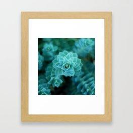Natural Geometry Framed Art Print