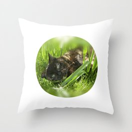 wild cat III Throw Pillow