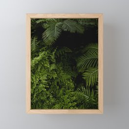 Tropical jungle. Framed Mini Art Print